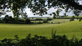 England-Landschaft Lizenzfreie Stockfotos