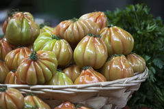 England London, Southwark, stadmarknad, grönsakStall, tomatskärm Royaltyfria Foton