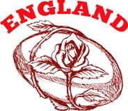 England rugby ball with english rose Stock Images