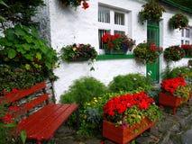England: vit stuga med blommor och bänken Arkivfoton