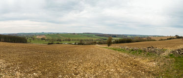 Englisch Buckinghamshire-Landschaftsfrühling gepflogenes Feld Stockbild