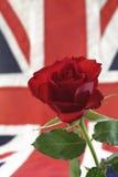 Englisch Rose mit Union Jack Lizenzfreies Stockbild
