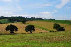 Englische Ackerlandlandschaft Lizenzfreie Stockfotos