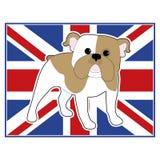 Englische Bulldoggen-Flagge Stockbild