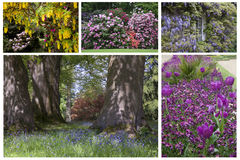 Englische Gärten im Frühjahr Lizenzfreie Stockbilder