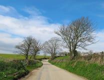 Englische Land-Straße in Cornwall Stockfoto