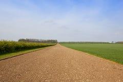 Englische Landschaft im Frühjahr Stockfoto