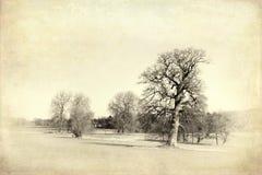 Englische Landschaftsweinlese Lizenzfreie Stockbilder