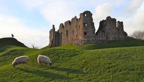Englische Schlossruinen Lizenzfreie Stockfotos