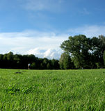 Englischer Garten Lizenzfreie Stockbilder