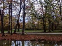 The Englischer Garten/English Garden Munich. The Englischer Garten is a large public park in the centre of Munich, Bavaria stock photography
