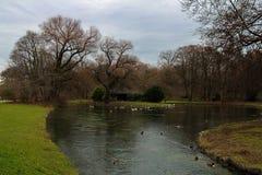 Englischer Gartenpark in München Stockbild