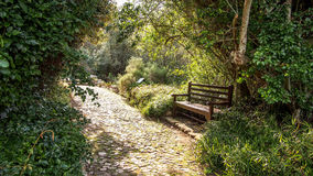 Englischer Gartenpfad und -türen Stockfoto