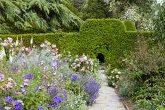 Englischer Häuschengarten mit Blumen in der Blüte, hohe grüne Hecke lizenzfreie stockfotos
