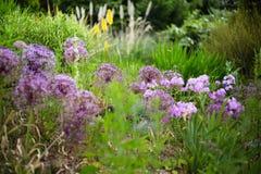 Englischer Landgarten Lizenzfreie Stockfotografie
