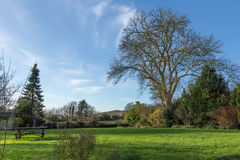 Englischer Landgarten in Sussex Stockfotos
