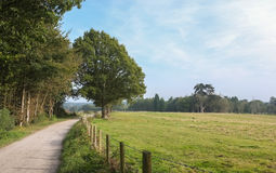 Englischer Landschaft-Pfad Lizenzfreies Stockbild