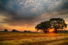 Englischer Sommer-Sonnenaufgang Lizenzfreies Stockfoto