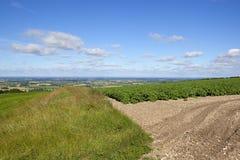 Englisches Ackerland des Patchworks mit Blick auf das Tal von York Stockbild