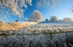 Englisches Ackerland im Winter Stockfotografie