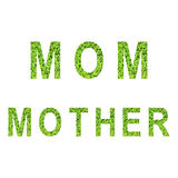 Englisches Alphabet der MUTTER und der MUTTER gemacht vom grünen Gras auf weißem Hintergrund Lizenzfreie Stockfotos