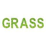 Englisches Alphabet des GRASES gemacht vom grünen Gras auf weißem Hintergrund Lizenzfreie Stockbilder