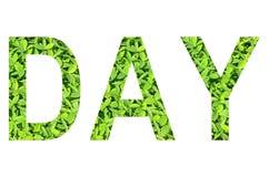 Englisches Alphabet des TAGES gemacht vom grünen Gras auf weißem Hintergrund für lokalisiert Lizenzfreie Stockfotografie