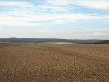 Englisches Landpanorama in Salisbury stockbild