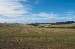 Englisches Landpanorama in Salisbury lizenzfreie stockfotos
