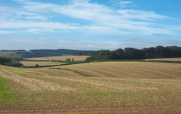 Englisches Landpanorama in Salisbury lizenzfreies stockbild