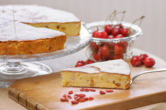 Englischkuchen mit Trockenfrüchten Stockbild