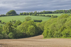 English agriculture farm land on a hill in Cotswolds. Plowed agriculture field between trees and green wheat farmland on a hill in an English countryside Royalty Free Stock Photo