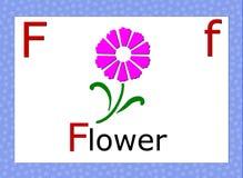 English alphabet. Individual english alphabet, whit flower- illustration vector illustration