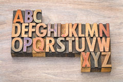 Alphabet abstract in vintage wood type. English alphabet abstract in vintage letterpress wood type printing blocks against grained wood Royalty Free Stock Images