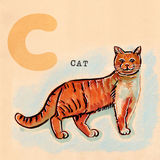 English alphabet , Cat Stock Image