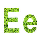 """English alphabet """"E.e"""" made from green grass on white background for isolated Stock Image"""