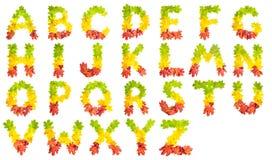 English alphabet, font made of colorful autumn leaves, photo Stock Photo