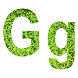 """English alphabet """"G.g"""" made from green grass on white background for isolated Royalty Free Stock Photography"""