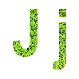 """English alphabet """"J.j"""" made from green grass on white background for isolated Royalty Free Stock Photos"""