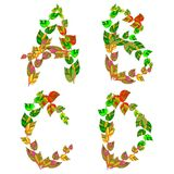 English alphabet made ??up of branches and leaves. Royalty Free Stock Image