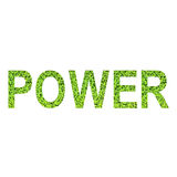 English alphabet of POWER made from green grass on white background Stock Photography