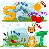 English alphabet S T. Colored cartoon English alphabet with S and T letters for children, with pictures of these letters with a shark, strawberry, sun, frog Royalty Free Stock Images