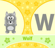 The English alphabet Wolf Stock Photos