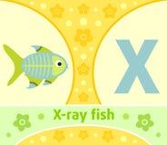 The English alphabet X Royalty Free Stock Image