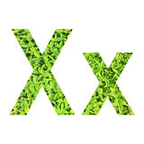 """English alphabet """"X.x"""" made from green grass on white background for isolated Stock Images"""