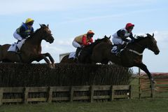 English Ameteur Racing. Three riders kick on  at the last fence in an English Point to point Royalty Free Stock Photography