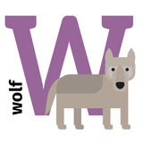 English animals zoo alphabet letter W. English animals zoo alphabet with letter W. Wolf and letter vector illustration Stock Photo