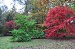 English autumn Royalty Free Stock Image