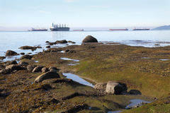 English Bay Shore and Freighters horizontal Royalty Free Stock Photography