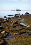English Bay Shore and Freighters Royalty Free Stock Photography